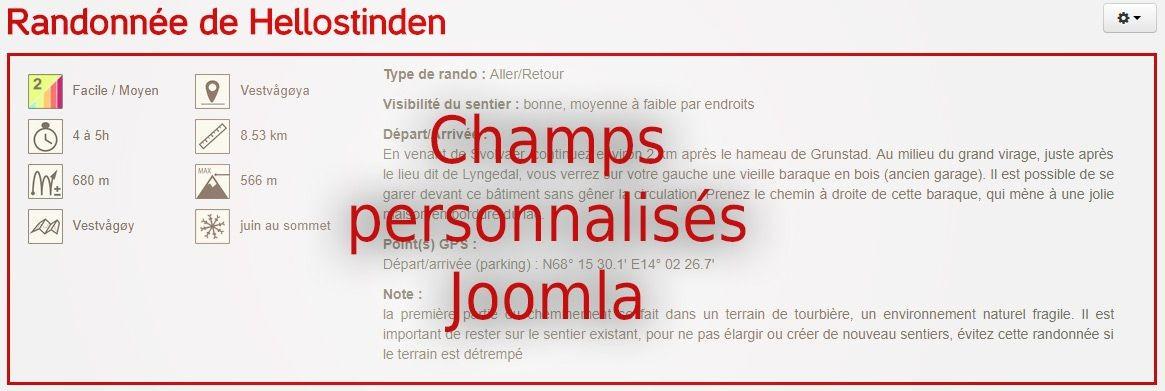 Joomla et les champs personnalisés